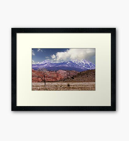 Picturesque  Framed Print