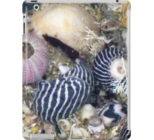 She Sells Sea Shells by the Sea Shore iPad Case/Skin