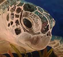 Sea Turtle by mehgantc