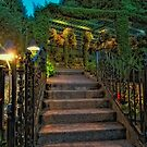 Butchart Gardens at Night 1 by Deri Dority