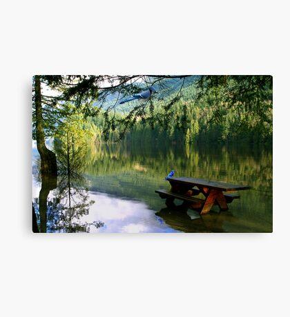 Blue Jays & Picnic Table Canvas Print