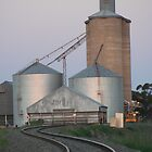 Silos in the setting sun by Leanne Davis