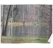 Water N Trees Poster