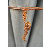Rusty Wire Photographic Print