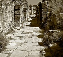 Streets of Leptis Magna by Craig Hender