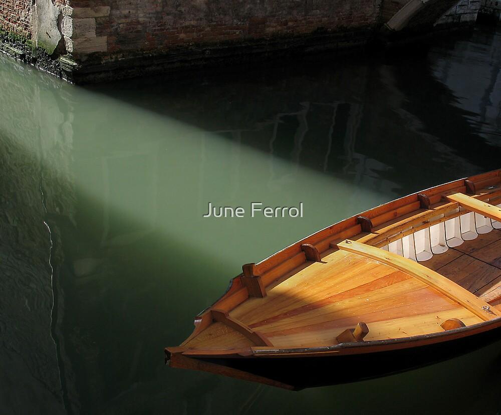 RAY OF LIGHT by June Ferrol