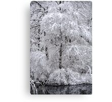 A mantle of white.... > Canvas Print