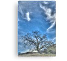 oak tree, landscape photography Canvas Print