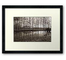 Marne Canal Framed Print