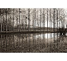 Marne Canal Photographic Print