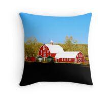 The Barn Door Throw Pillow