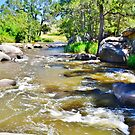Fish River by Terry Everson