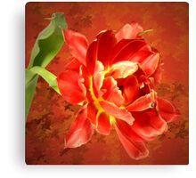 Inflame Canvas Print