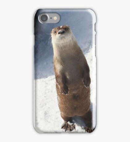 Friendly Snow Otter iPhone Case/Skin