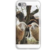 Sheep Brothers iPhone Case/Skin