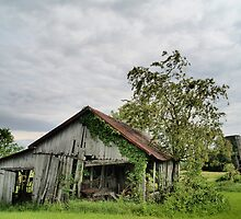 Old Barns Series #2 by Gaby Swanson  Photography