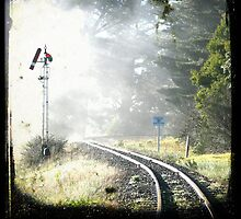 Travelling Back by sobriquets