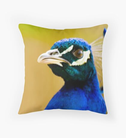 Angry Stares Throw Pillow