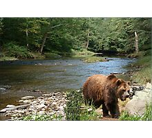 870-Summer Creek Photographic Print