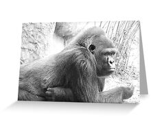 Ape... Thinking of You Greeting Card
