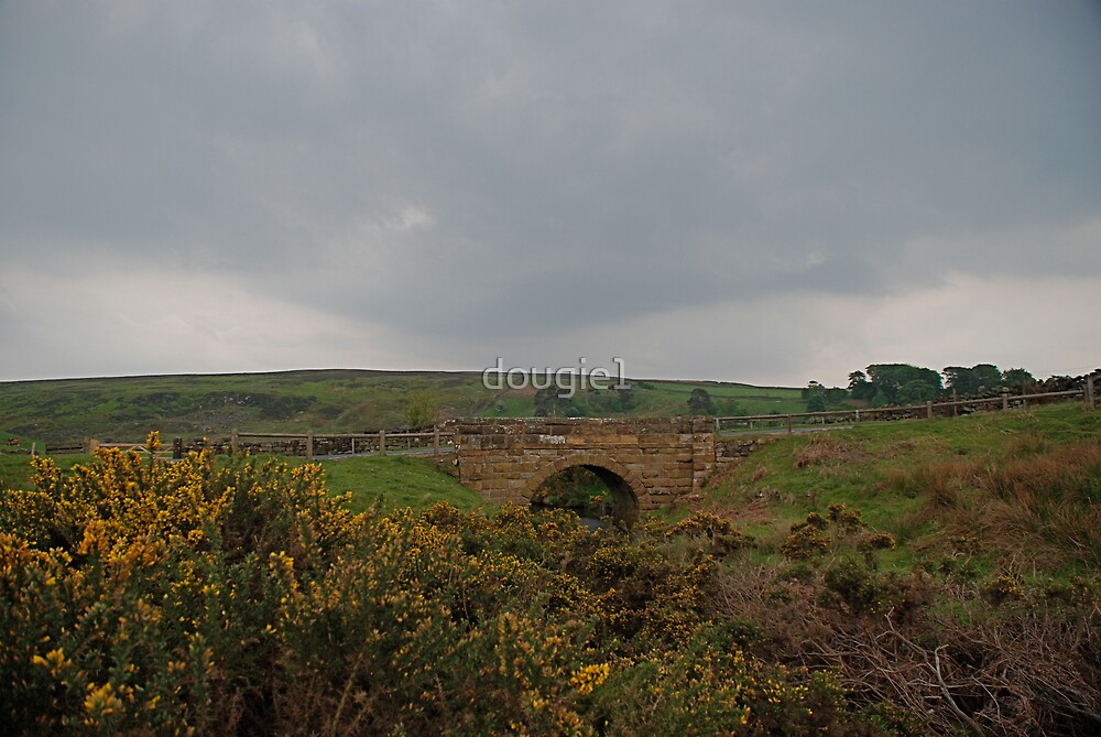 bridge, commondale, nym np by dougie1