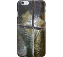 Frosted Daffodils  iPhone Case/Skin
