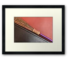 Quidditch auditions Framed Print