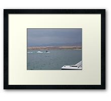 Water Games Framed Print