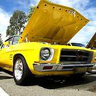 Yellow Monaro by Nathan Horswill