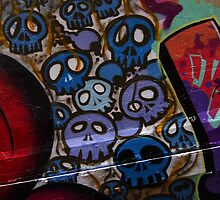 Skulls by Graham Lea