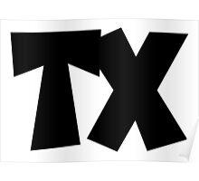 TX Texas Poster