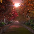 Forest Drive Home by Steve Davis