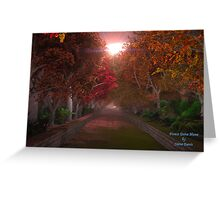 Forest Drive Home Greeting Card