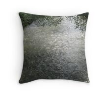 Shadow & Light on Bear Creek Throw Pillow