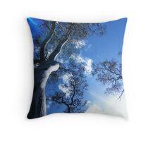 Studley Park Throw Pillow