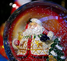 Snow Globe. by Todd Rollins