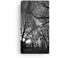 Autumn morning in McCarthur Park Canvas Print