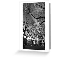 Autumn morning in McCarthur Park Greeting Card