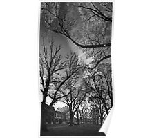 Autumn morning in McCarthur Park Poster