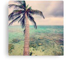 free coconut Canvas Print
