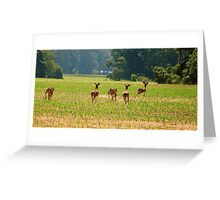 Young Bucks Busted Greeting Card