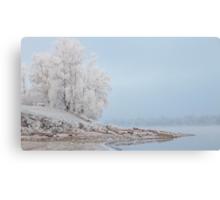 morning fog in winter Canvas Print
