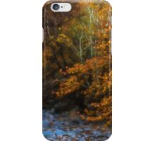 Blue Stones, Yellow Leaves - a Dry River Impressions iPhone Case/Skin