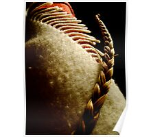 Sweetgrass On A Blanket Poster