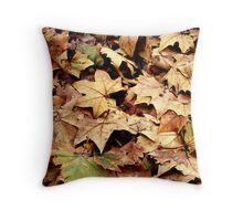 the colours of autumn Throw Pillow