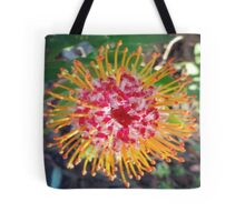 Red as the sun  Tote Bag