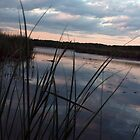 Sunset on 100 Acre Pond by GroveDawg