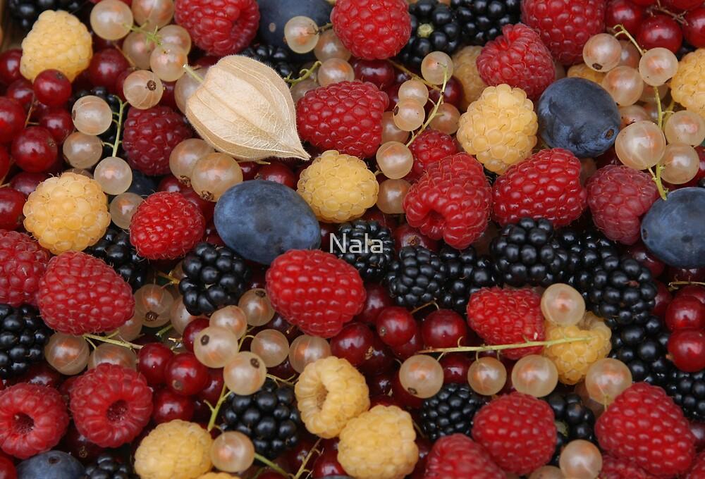 Fresh food by Nala