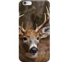Deer Buck - Ottawa, Ontario - 1 iPhone Case/Skin