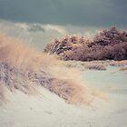 Beach by Andy Stafford